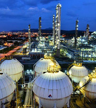 Petrokimyada İlk Risk Yönetimi Sistemi Doğrulama Belgesi Petkim'in Oldu