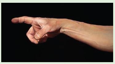 Axalta'nın Cromax® Son Katları, New York Fuarında Sanata Hayat Getirdi