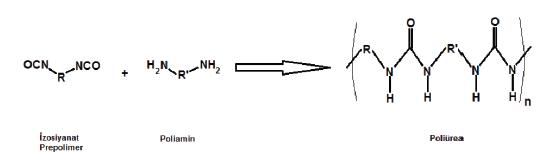 poliürea reaksiyonu