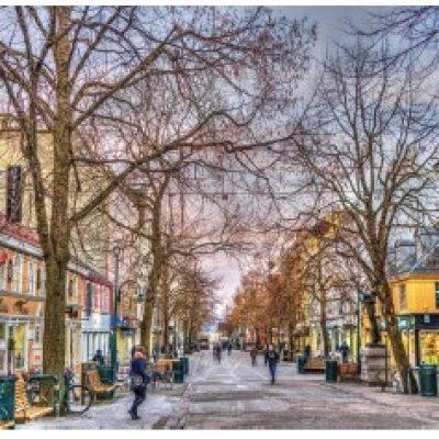 İskandinavya