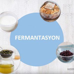 FERMANTASYON ETKİSİ