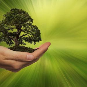 DuPont'tan 2030 Sürdürülebilirlik Hedefleri