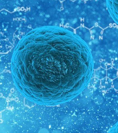 Kanserle Mücadelede Metastazdan Sorumlu Proteinler