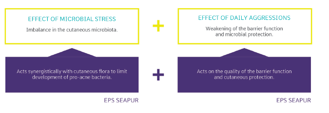 Cutaneous Blesmishes, the Answer Already Lies on Your Skin: EPS Seapur