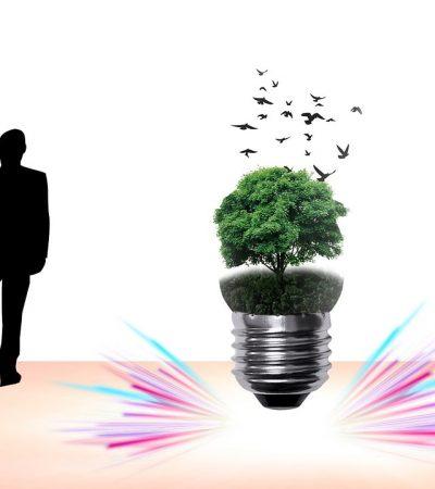 Bursa OSB'ye Çevre Duyarlılığı Ödülü