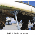 Gemilerde Boya Uygulamalarında Antifouling (Zehirli) Boyaların Önemi