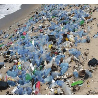 Geleceğini Plastik Ambalajla Çöpe Atma, Dönüştür