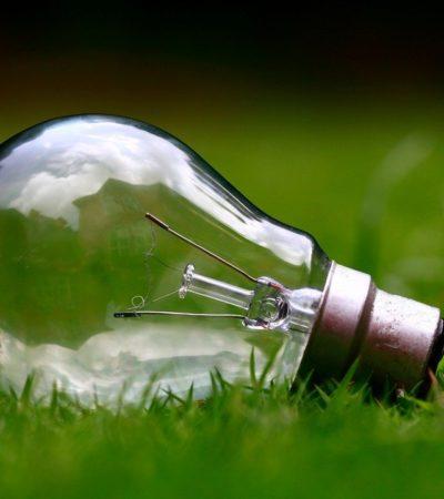 Evonik ve Siemens Energy İklim Dostu Üretim Gerçekleştiriyor