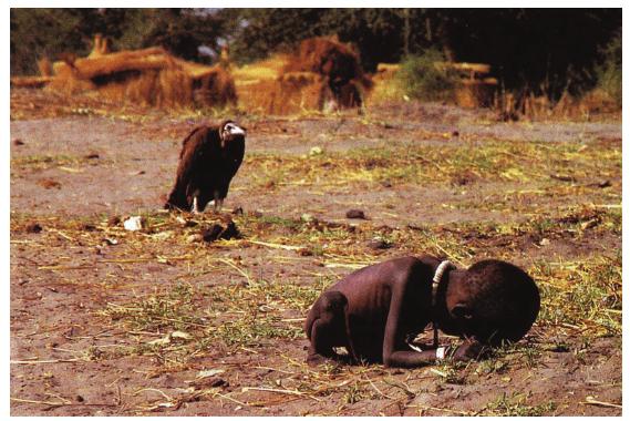 Şekil 1. Kevin Carter- Akbaba ve küçük kız,1993, orijinal isim: Mücadeleci Kız