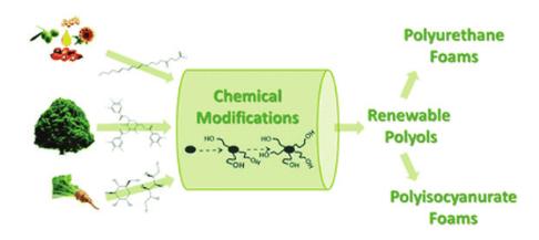 Poliüretan Temelli Malzemelerin Enzim İmmobilizasyonunda Kullanımı