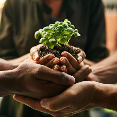 Gıda Sistemini Yeniden Yapılandırmak için Etkinlik Düzenlenecek
