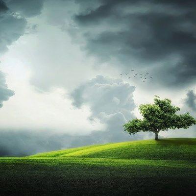 """""""Yeşil ve Sürdürülebilir Üretim İçin Dijital Uygulamalar"""" Webinarı Düzenlendi"""