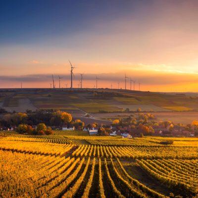 'KompoRize' Yeşil Üretimi Destekliyor