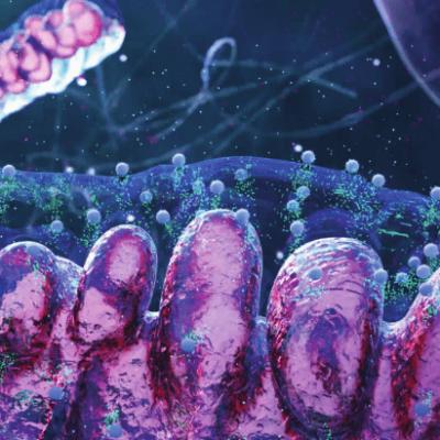 Deri Mitokondri Terapisinde Çığır Açan Ürün ile Tanışın