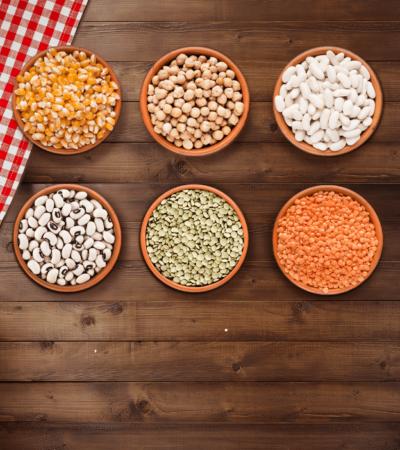 Sürdürülebilir Beslenmenin Temelleri Atılıyor