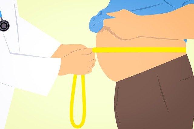 Obeziteyi Önlemek için, Uluslararası Sağlıklı Gıda Yarışması Yapılacak