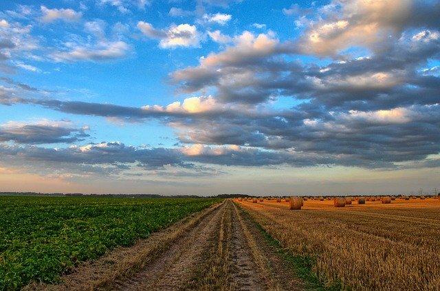 """""""Tarımda Teknolojik ve İnovatif Çözümler"""" Yarışmasının Başvuruları Devam Ediyor"""
