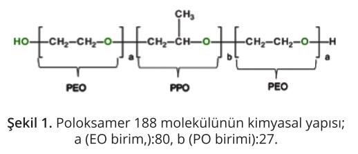 Kolliphor P 188 Bio Ürünü ile Biyolojik İlaç Üretiminde Kesme Gerilimine Karşı Koruma