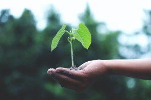 Türk Firmaları DEİK ile Yeşil Dönüşüme Hazırlanacak