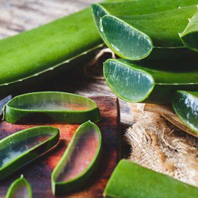 Barentz'in Doğal Biyoaktifler Zengini Aloe Verası