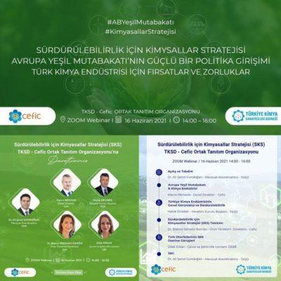 Sürdürülebilirlik için Kimyasallar Stratejisi TKSD-CEFIC Ortak Tanıtım Organizasyonu