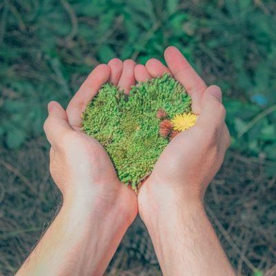 Tarımda Sürdürülebilir Gelecek için Bayer Youth Ag Summit'e Başvurular Devam Ediyor