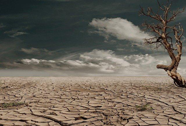İklim Değişikliği Salgınlara Sebep Olabilir