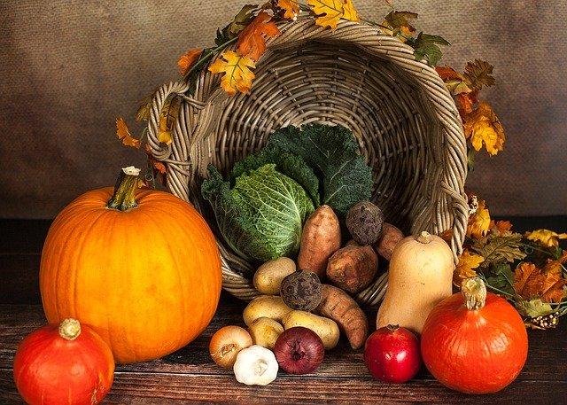 Sürdürülebilir Gıda Zirvesi 19-20 Ekim'de Gerçekleşecek